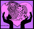 Hearts and Hands Animal Rescue